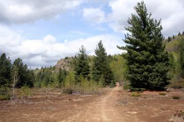 miral-trail20090506_0009