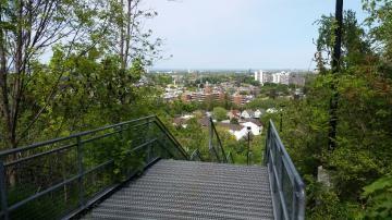 Hamilton Escarpment Stairs