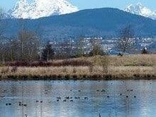 willband-creek-park